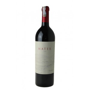 Maipo Valley Mater 2009